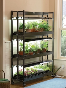 3 shelf grow lights
