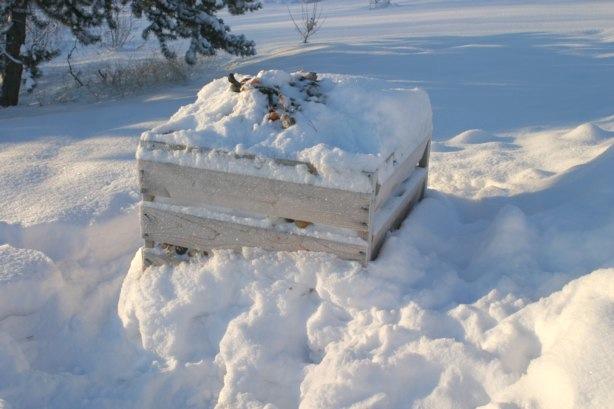 snow on raised bed