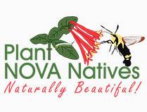 Plant Nova Natives