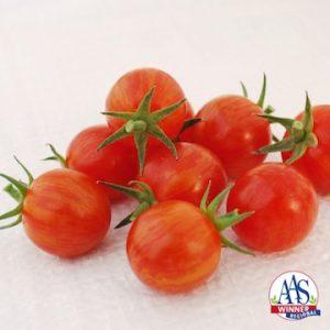 Tomato Sparky