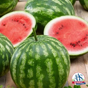 Watermelon Bush Cal Sweet