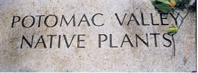 Meadowlark stone marker
